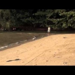 Video: Hanalei River Plugged Up
