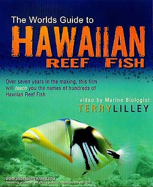 Hawaiian Reef Fish DVD, a close-up of a trigger-fish is pictured